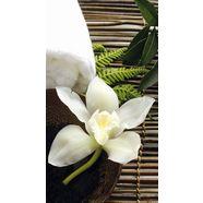 vliesbehang »wellness orchidee« multicolor