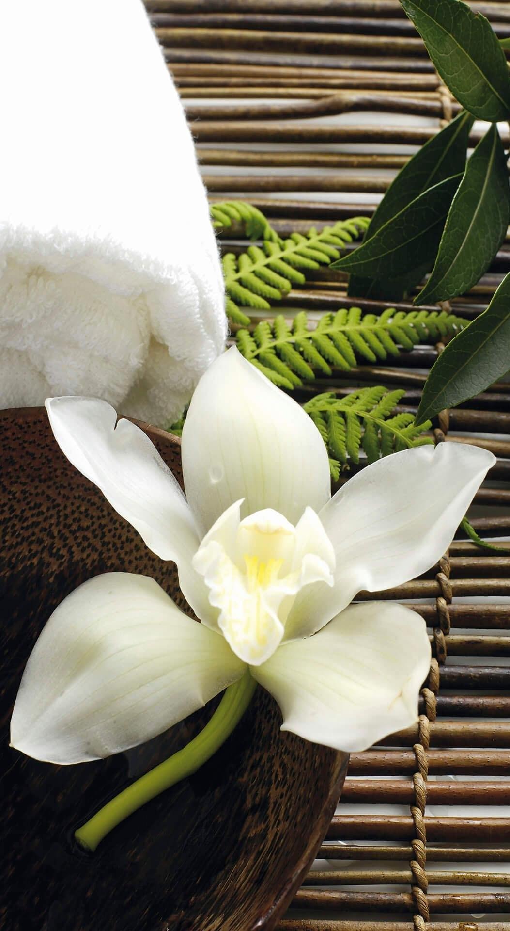 Wall-Art vliesbehang Wellness orchidee goedkoop op otto.nl kopen