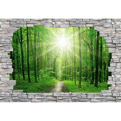 fotobehang »sunny forest mauer« groen