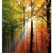 wall-art vliesbehang gouden herfst multicolor