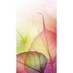 fotobehang »pink design« multicolor