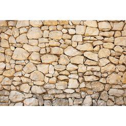 wall-art vliesbehang muur 01 bruin
