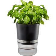 gefu kruidenpotje met bewateringssysteem, »botanico« zwart