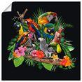 artland artprint papegaaien grijze papegaai kaketoe jungle in vele afmetingen  productsoorten - artprint van aluminium - artprint voor buiten, artprint op linnen, poster, muursticker - wandfolie ook geschikt voor de badkamer (1 stuk) multicolor