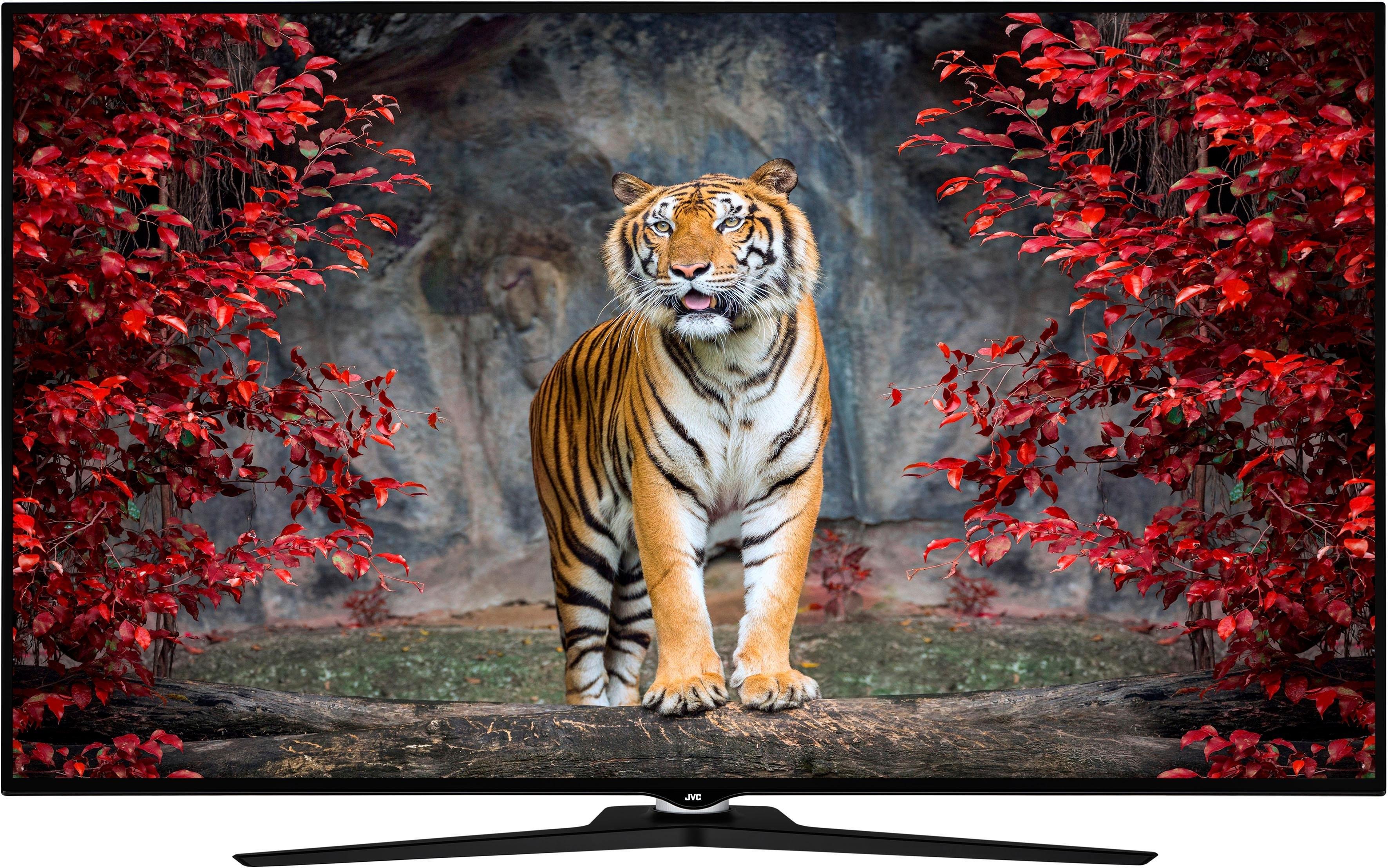 JVC LT-55VU980 led-tv (55 inch), 4K Ultra HD, smart-tv - gratis ruilen op otto.nl