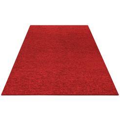 vloerkleed, »piero«, my home, rechthoekig, hoogte 2 mm, machinaal geknoopt rood