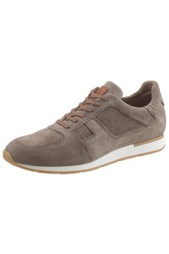 guido maria kretschmer sneakers grijs
