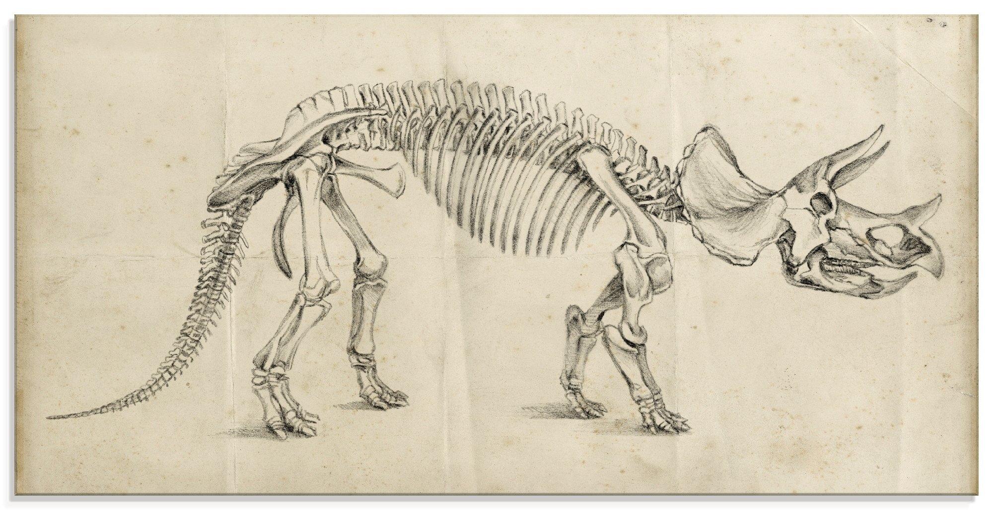 Artland print op glas Dinosauria leer II (1 stuk) veilig op otto.nl kopen