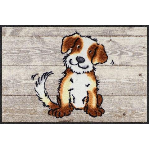Mat, Dog on Wood, Salonloewe, rechthoekig, hoogte 7 mm, geprint