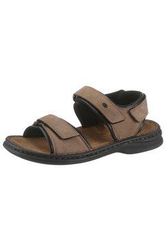 josef seibel sandalen »rafe« bruin