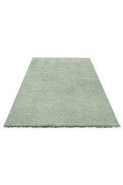 hoogpolig vloerkleed, my home selection, »desner«, hoogte 38 mm, handgetuft groen
