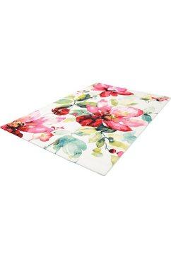vloerkleed, »belis blume«, merinos, rechthoekig, hoogte 13 mm, machinaal geweven multicolor