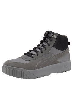puma sneakers »tarrenz sb« grijs