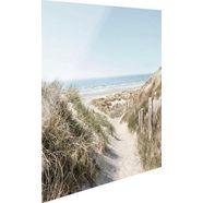 reinders! print op glas strandweg beige