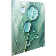 reinders! print op glas dauwdruppels groen