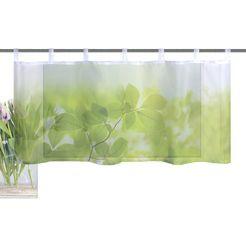 vision s valletje »leaf« groen