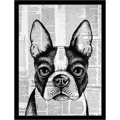 gc wanddecoratie »newspaper bulldog i« zwart