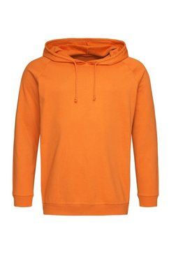 stedman sweatshirts oranje