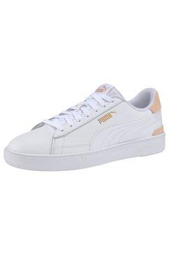 puma sneakers »puma smash pro«