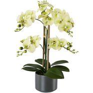 creativ green kunstplant orchidee groen