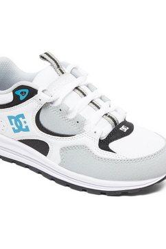 dcshoes schoenen ''kalis lite'' grijs