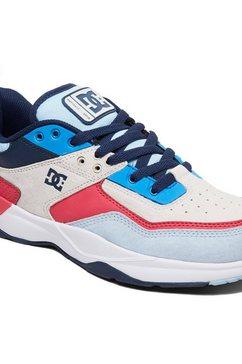 dc shoes schoenen »e.tribeka se« blauw