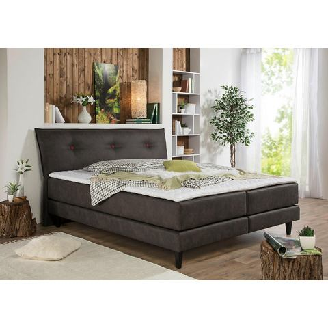Home affaire boxspring Capaya