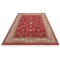 wollen kleed, »aras«, delavita, rechthoekig, hoogte 12 mm, met de hand geknoopt rood