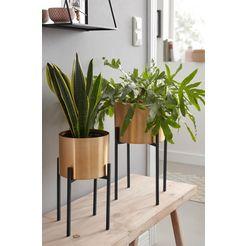 couch♥ plantenbak goud