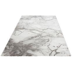 vloerkleed, »juliet«, leonique, rechthoekig, hoogte 12 mm, machinaal geweven grijs