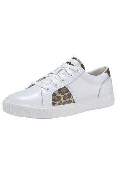 timberland sneakers »skyla bay oxford« wit