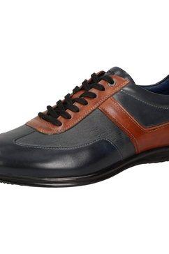 sioux sneaker »monaim-700« multicolor