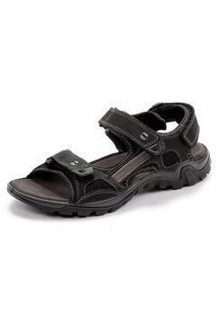 salamander sandalen »dino« zwart