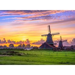 bmd fotobehang »dutch windmills« multicolor