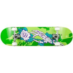 playlife skateboard »homegrown«