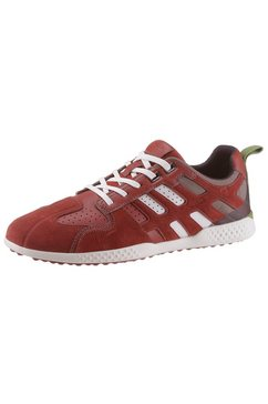 geox sneakers »snake« rood