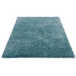 sehrazat hoogpolig vloerkleed ethno1800 gemêleerde lange pool, woonkamer blauw