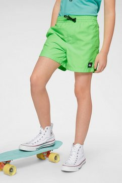quiksilver boardshort »everyday volley youth« groen