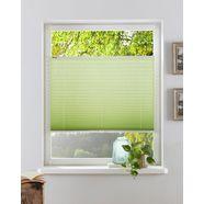 my home plissé-vouwgordijn dahra groen