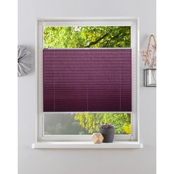 my home plissé-vouwgordijn dahra paars