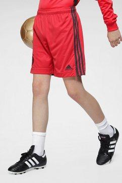adidas performance trainingsshort »em 2020 dfb torwart-heimshorts kinder« rood