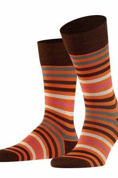 falke sokken oranje
