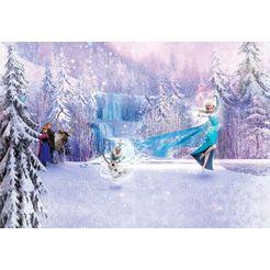 komar fotobehang »frozen forest« multicolor