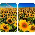 wenko kookplaatdeksel universeel, zonnebloemenveld (set, 2-delig) multicolor