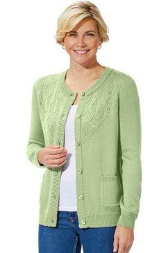 classic basics vest groen