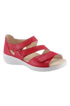 softline by goldkrone klittenbandschoenen rood