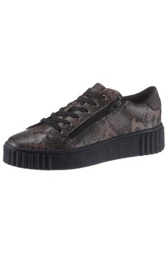 city walk plateausneakers bruin