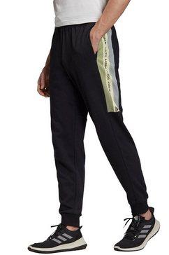 adidas performance joggingbroek »must haves enhanced pant gfx« zwart