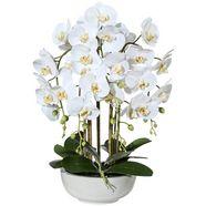 creativ green kunstplant »orchidee phalaenopsis« wit