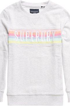 superdry sweater »sb rainbow panel crew ub« grijs